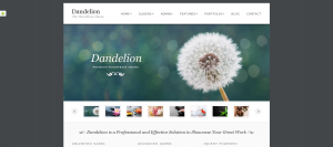 Dandelion-Premium-Elegant-WordPress-Theme 2013-11-07 12-44-53